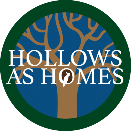 Hollows as Homes